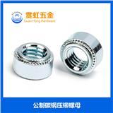 公制碳钢/不锈钢M2-M12冷镦压铆螺母